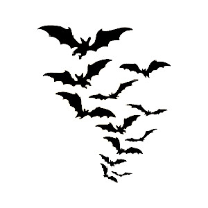 Bat clipart row Polyvore and Tumblr Graphics Page
