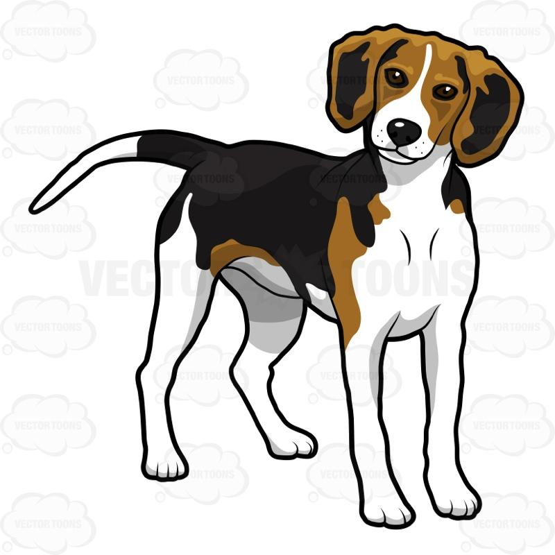 Beagle clipart Beagle Sitting Clipart Beagle Cliparts