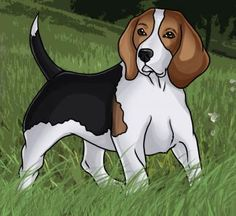 Beagle clipart therapy dog On Draw Dog Beagle