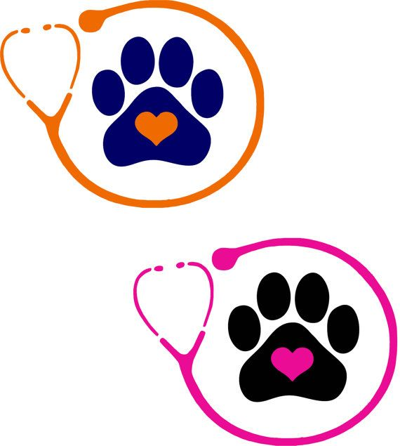 Perro clipart veterinary assistant Decal ♥ best 591 images