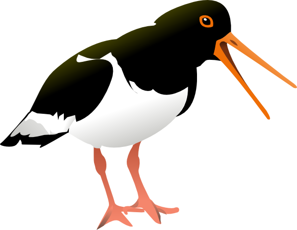 Beak clipart Clipart beak photo#4 Duck Duck