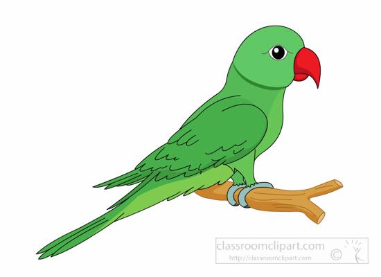 Parrot clipart #2