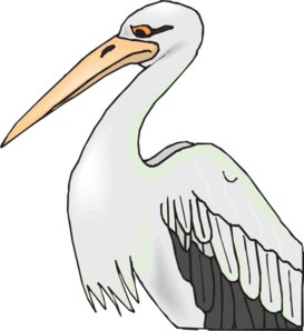 Beak clipart Pelican With Beak Art Beak