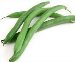 Bean clipart bean plant Bean Free Green Beans Tags: