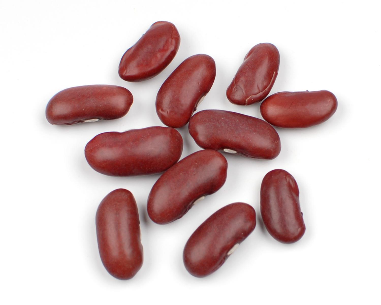 Beans clipart pinto bean Beans Pinto bean clipart Cliparts