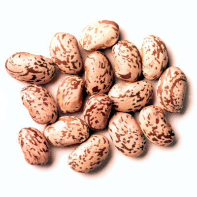 Beans clipart pinto bean Of sweetness Become Jelly their