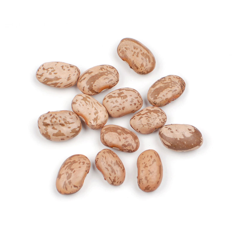 Beans clipart pinto bean And Beans Beans Calypso Pineapple