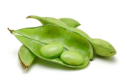 Beans clipart soybean Product:  Soybean oil Francke