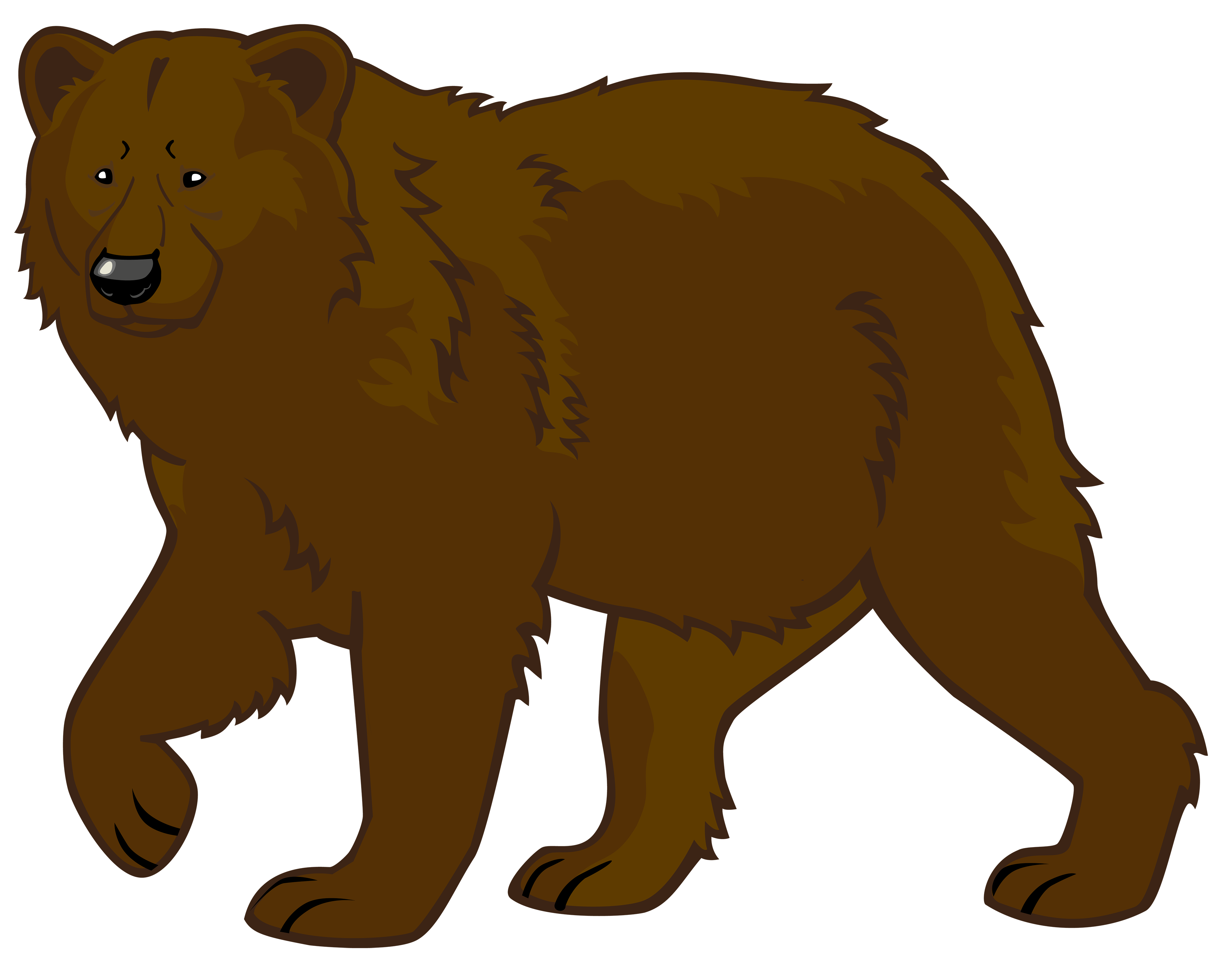 Brown Bear clipart Art clip polar pics bear