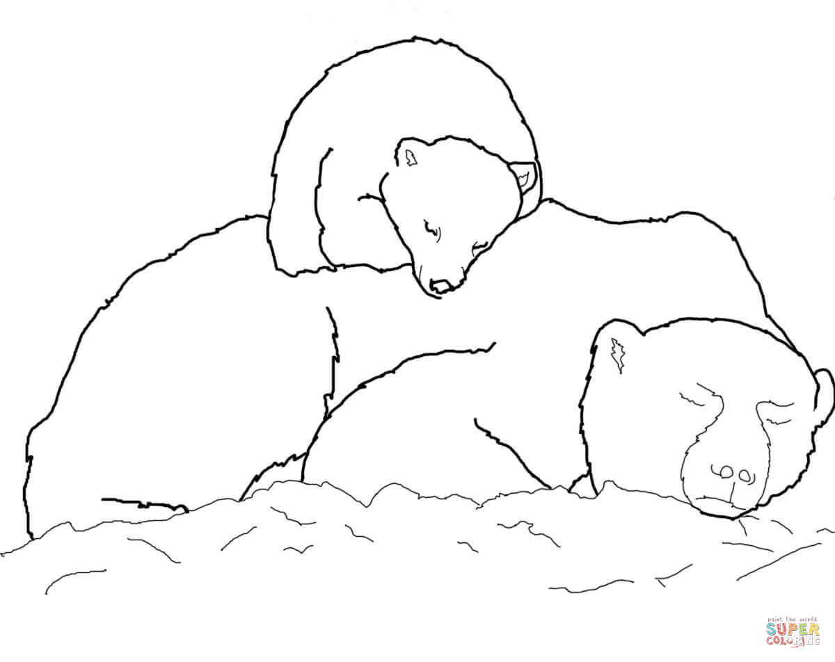 Drawn polar  bear mother bear Pages coloring bear Page coloring