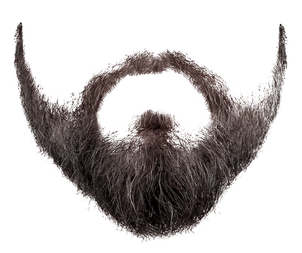 Beard clipart hairstyle transparent male #2