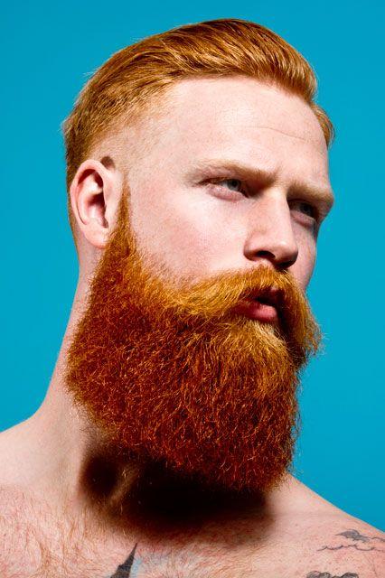 Beard clipart just hair Beard Bearded Best on men
