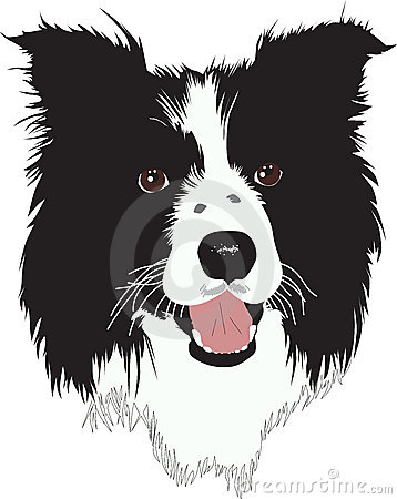Bearded Collie clipart Images & on Pin Photos