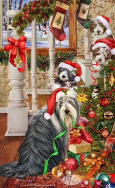 Bearded Collie clipart christmas About on Christmas images are