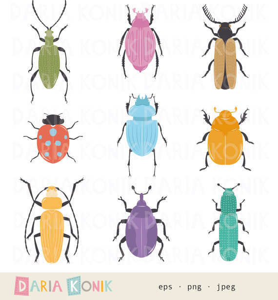 Beetles clipart arthropod Bugs Set insects Art bugs