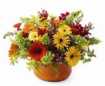 Beautiful clipart autumn flower Fall wedding Pinterest flower 81