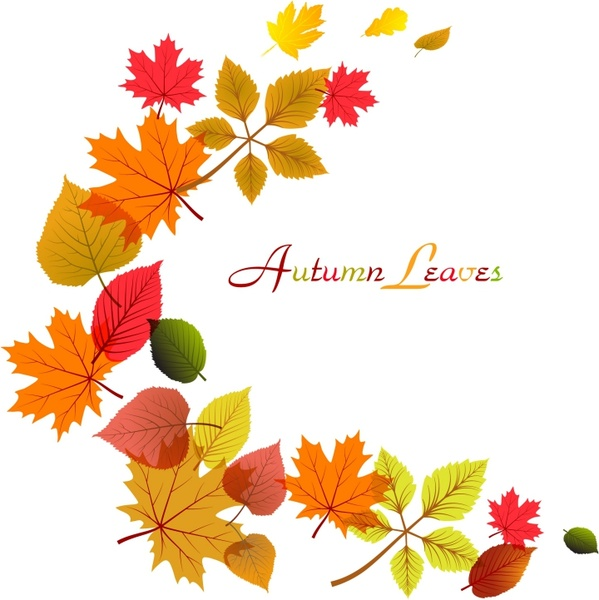 Beautiful clipart autumn flower Abstract vector Floral free (14
