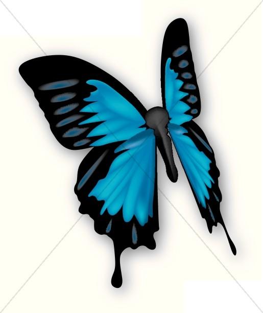 Beautiful clipart blue butterfly Butterfly Blue Clipart Beautiful Sharefaith