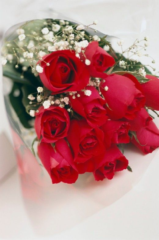 Beautiful clipart flower bucket Pinterest 29 images best on