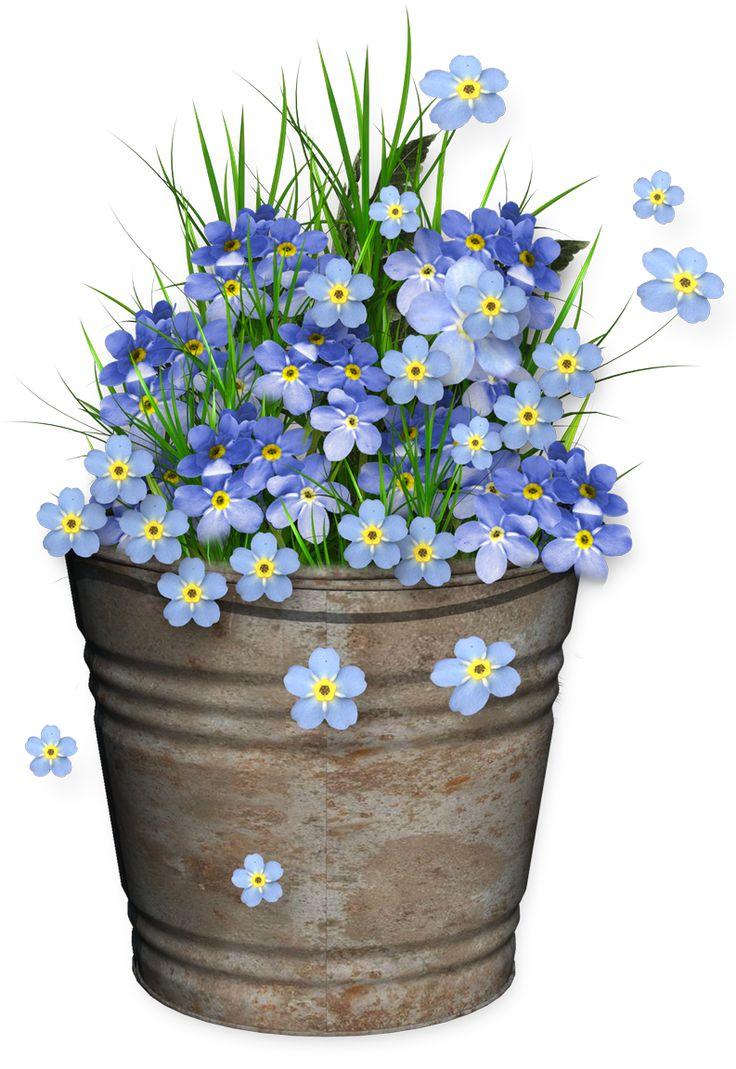 Beautiful clipart flower bucket Pinterest 25+ ideas Flower on