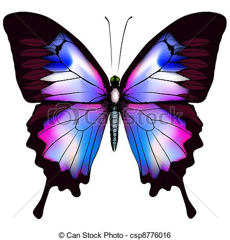 Beautiful clipart purple butterfly Clip  csp8776016 Art isolated