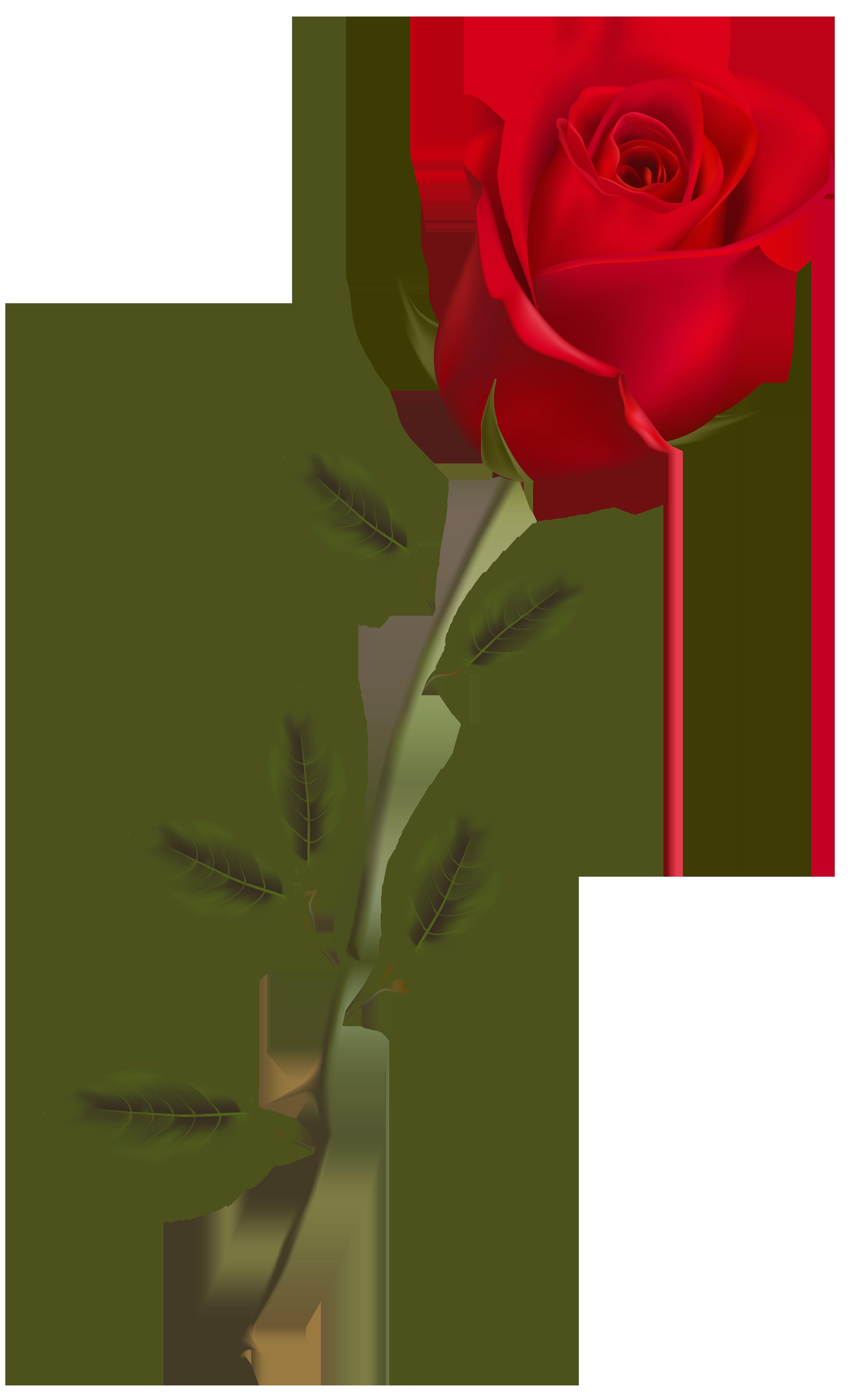 Red Flower clipart long #5