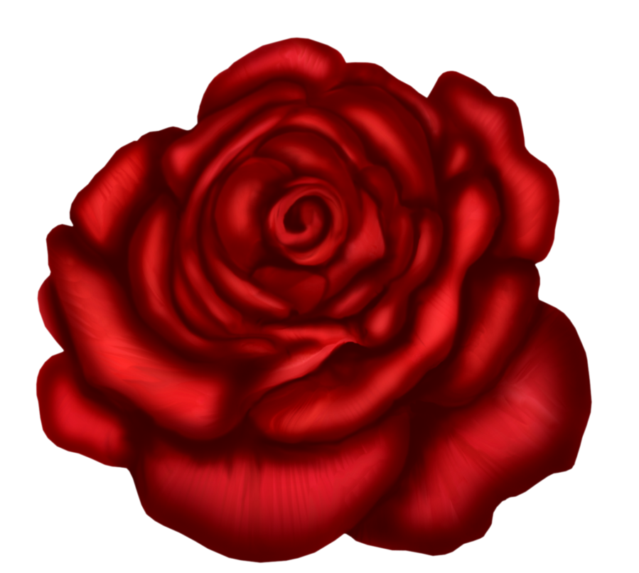 Beautiful clipart red rose Art Download Clip  Rose