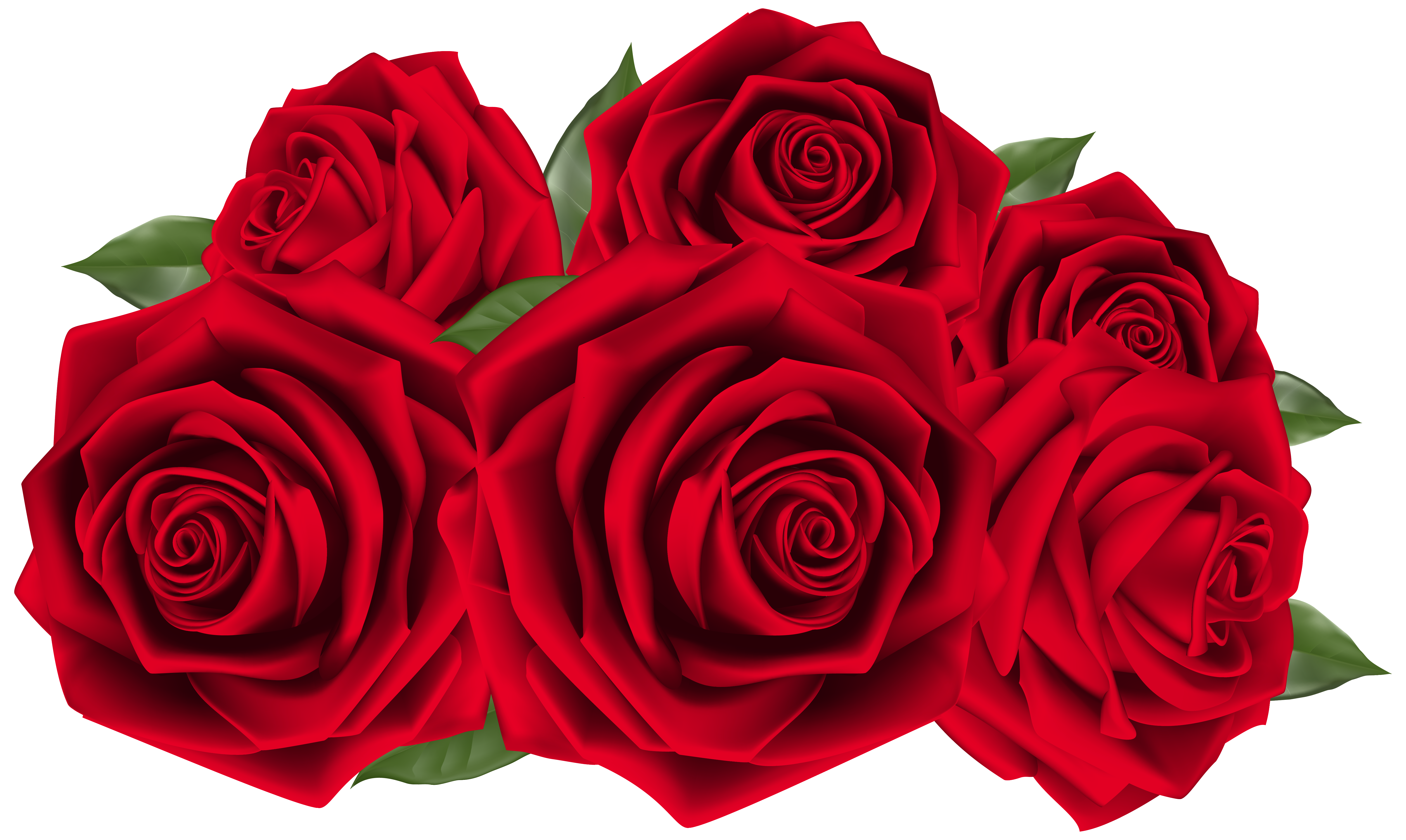 Beautiful clipart red rose Clipart  Red Yopriceville size
