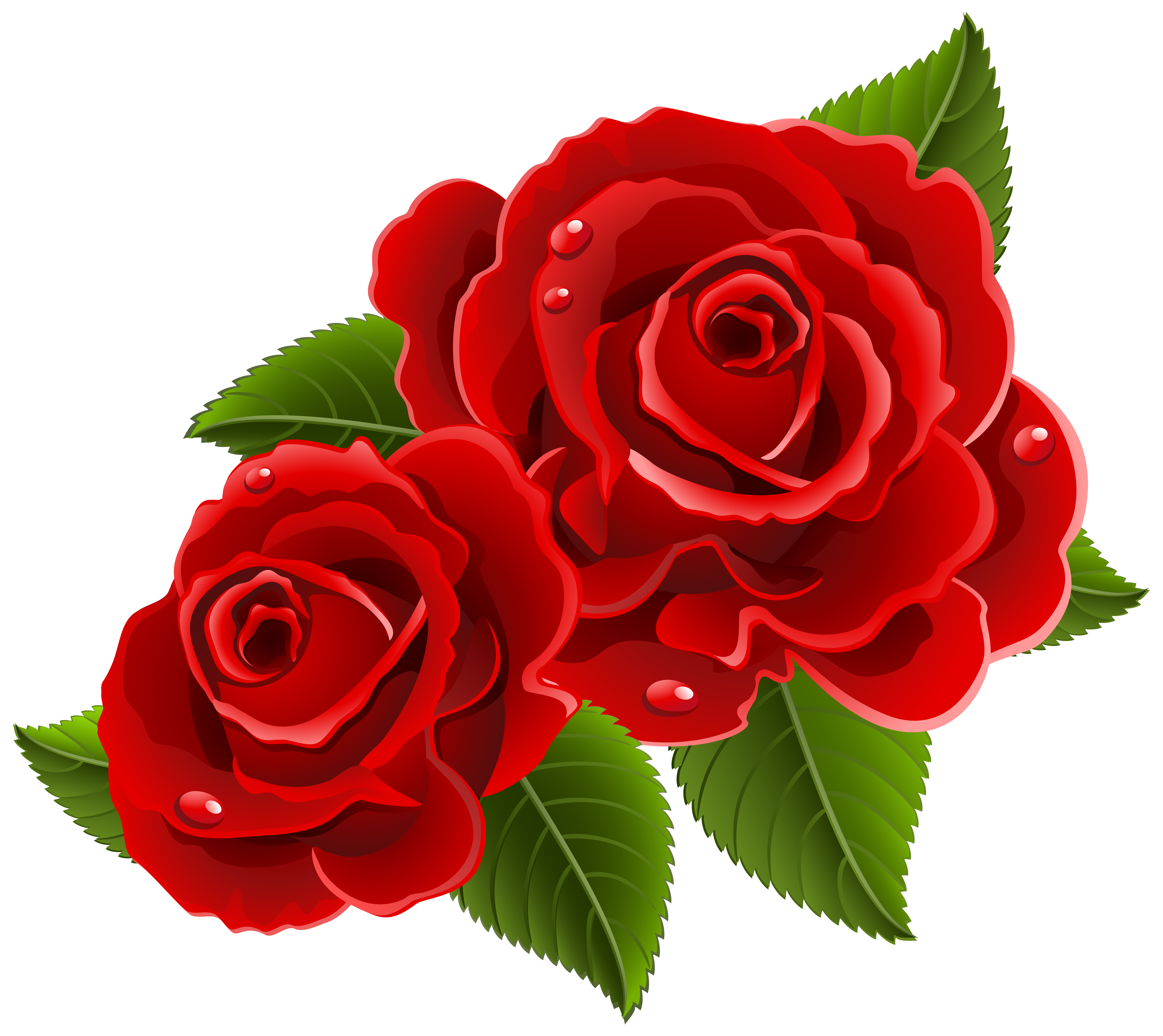 Beautiful clipart red rose Picture Beautiful  size PNG