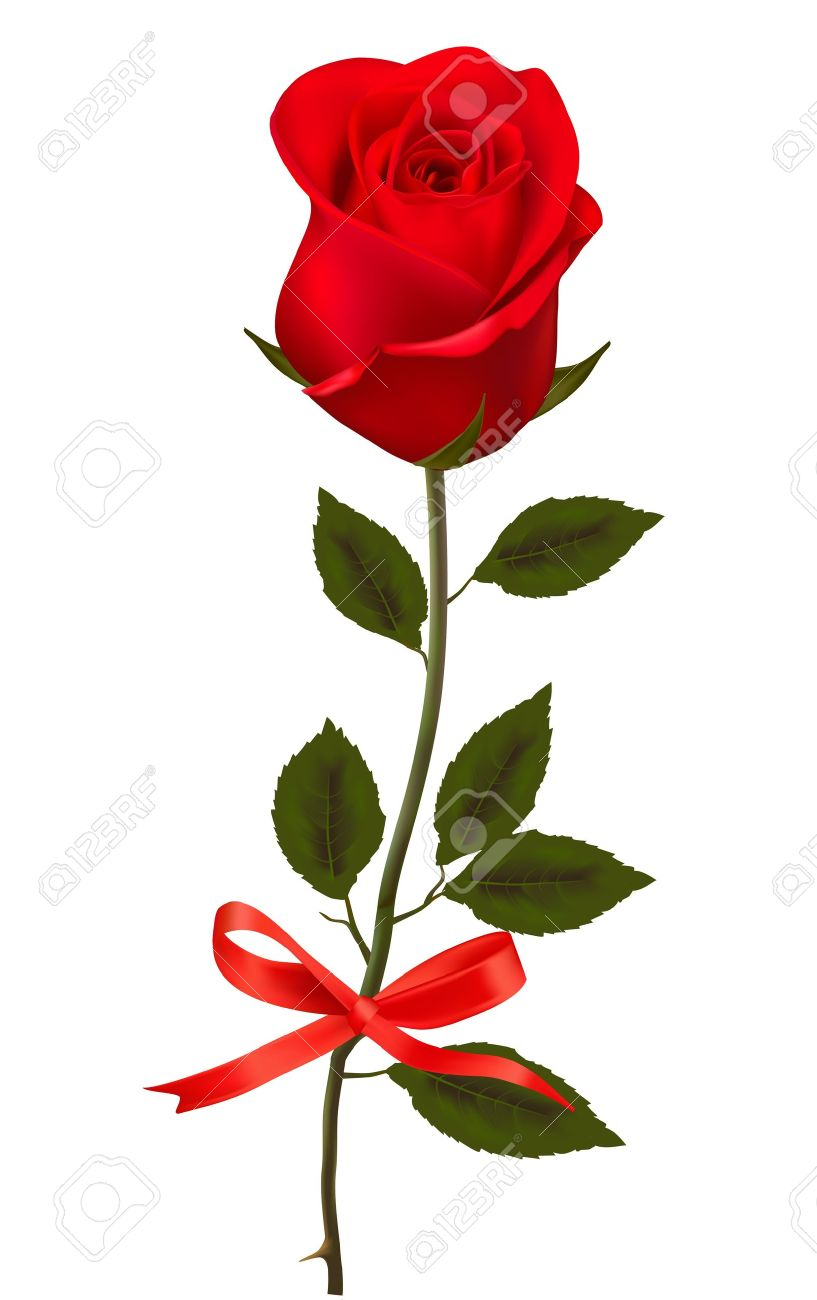 Beautiful clipart red rose Rose rose clipart red Beautiful