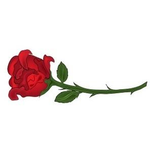 Rose clipart long stem rose #7