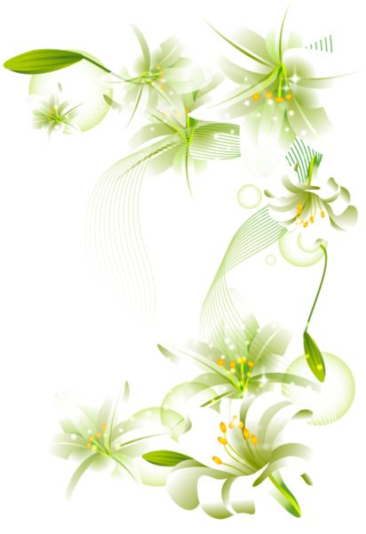 Beautiful clipart transparent background BBCpersian7 RES] collections Flowers PNG