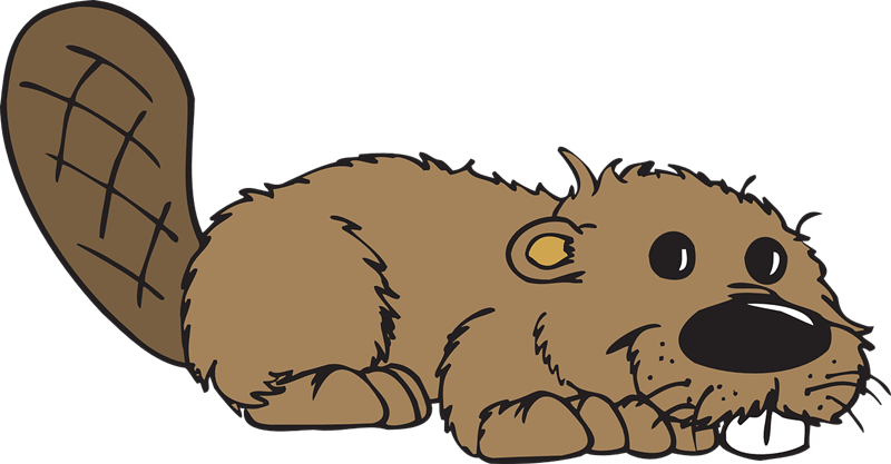 Beaver clipart kawaii Beaver art art Clipart beaver
