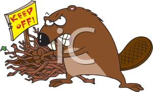 Beaver clipart building Art To Saying Beaver Off