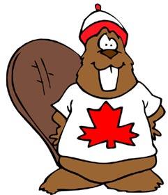 Beaver clipart canada Canada Beaver the Quick Guide