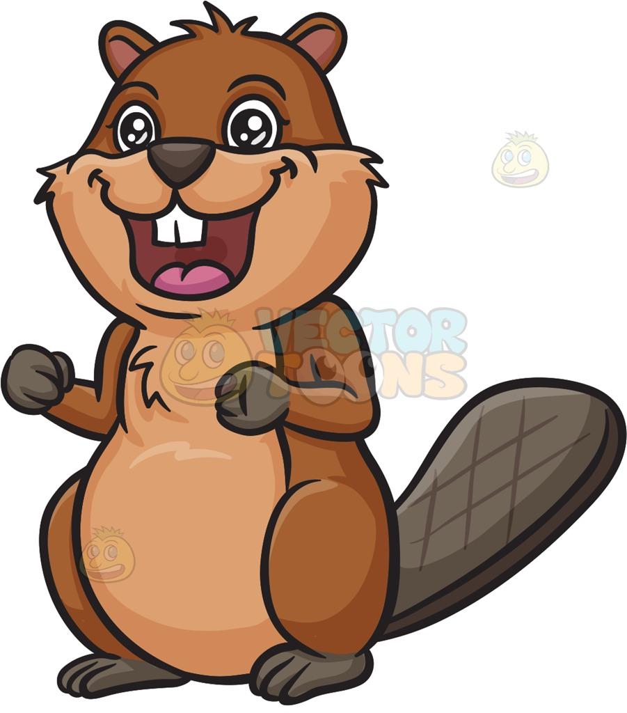 Beaver clipart squirrel cartoon Clipart beaver Fans Clipart beaver