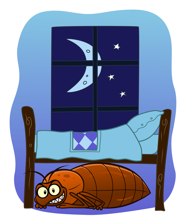 Bed clipart big bed Bug Clipart Bed Download Art