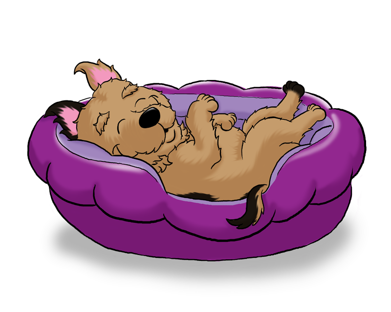 Bed clipart dog Kaboodle Dog Beds Rovers Kit