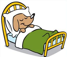 Bed clipart dog Twin size Dog in Free