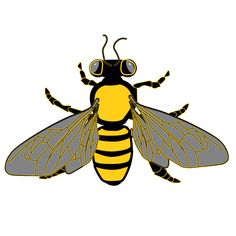 Bees clipart clear background And and Graphic Border from