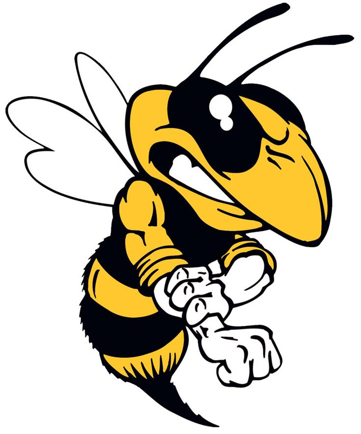 Hornet clipart wasp Bee Clipart muscle muscle yellowjacket