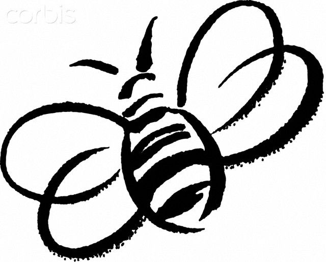 Bee clipart outline 25+ How a bumble on