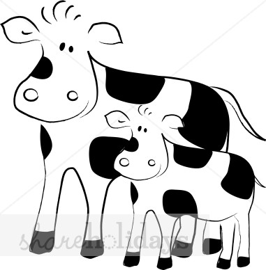 Drawn cattle baby cow #14