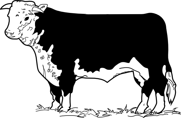 Beef clipart hereford cow Beef Cattle Clipart Beef cliparts