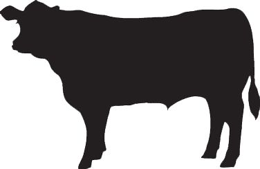 Beef clipart silhouette Pinterest Bovine & Chops and