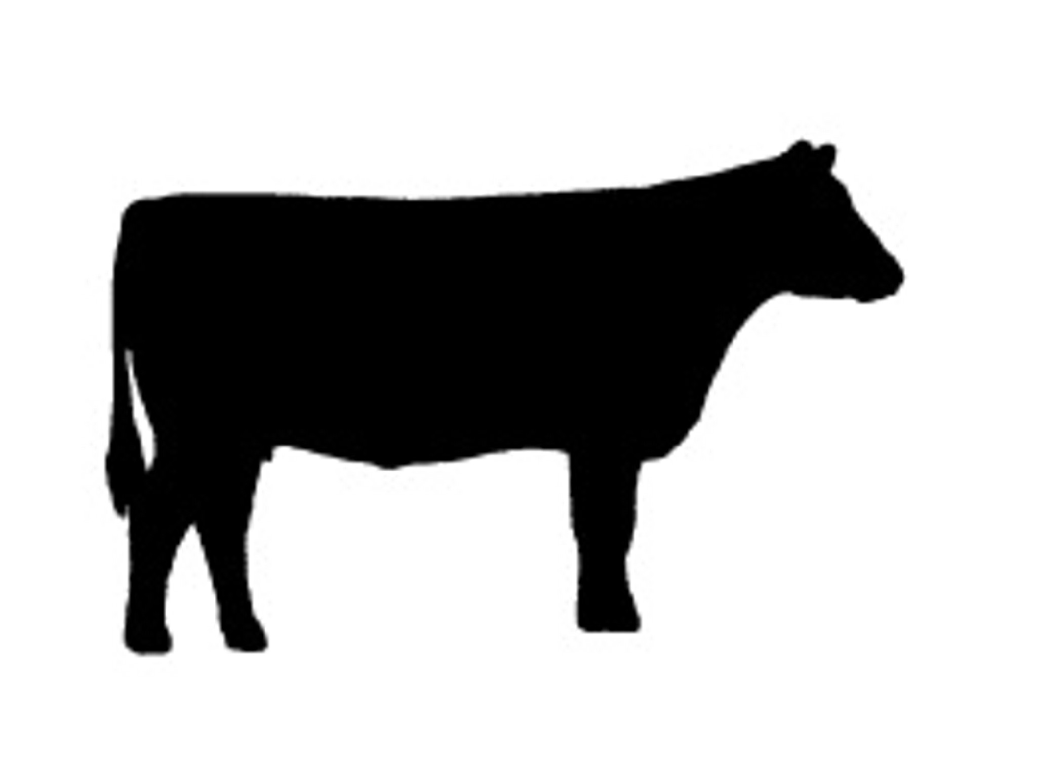 Beef clipart silhouette Silhouette cattle cow 5 silhouette