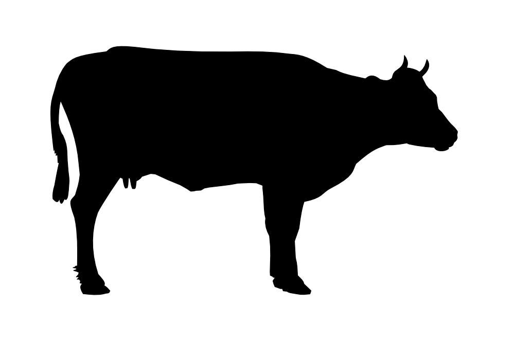 Beef clipart transparent Cow siluete free PNG picture