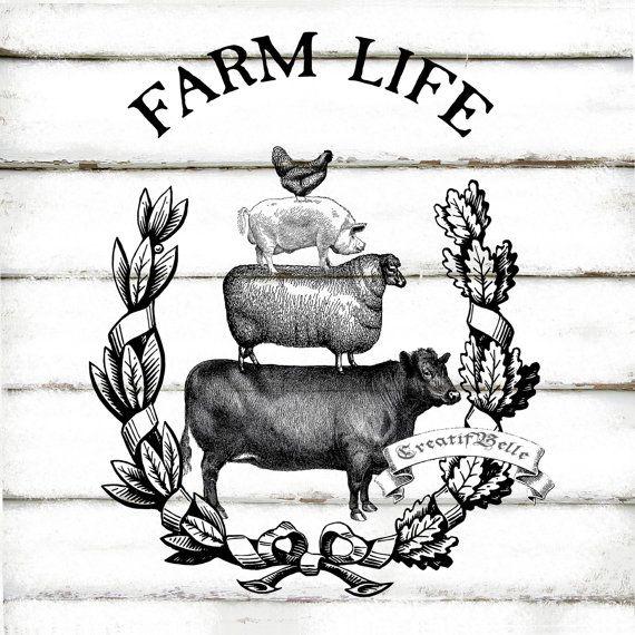 Beef clipart vintage Farm ideas Image 0257 Graphic