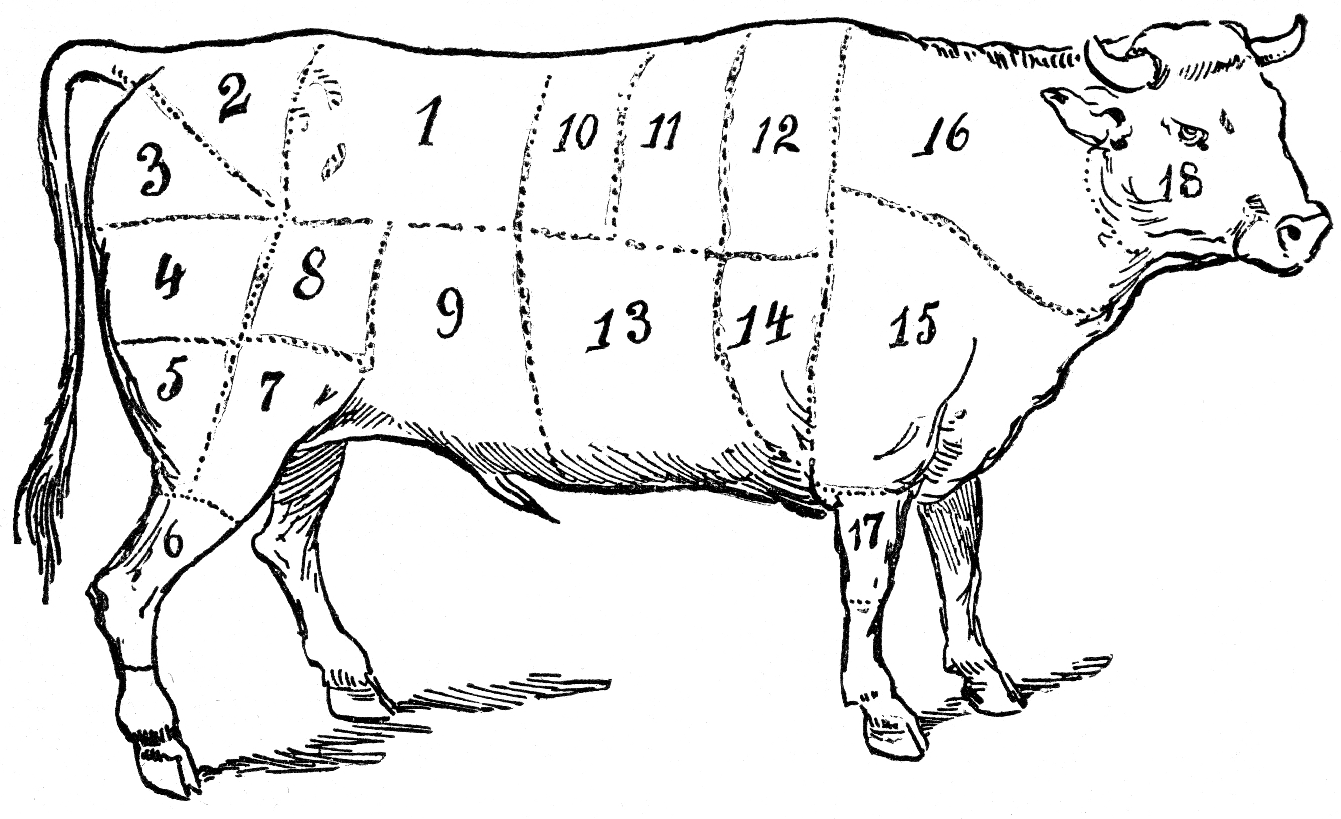 Beef clipart vintage 6 Beef Art Page Miss