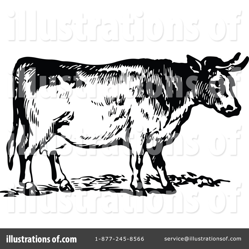 Beef clipart vintage Clipart Royalty Clipart Cow by